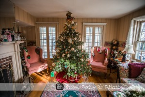 Christmas_in_Salem_2014_3063